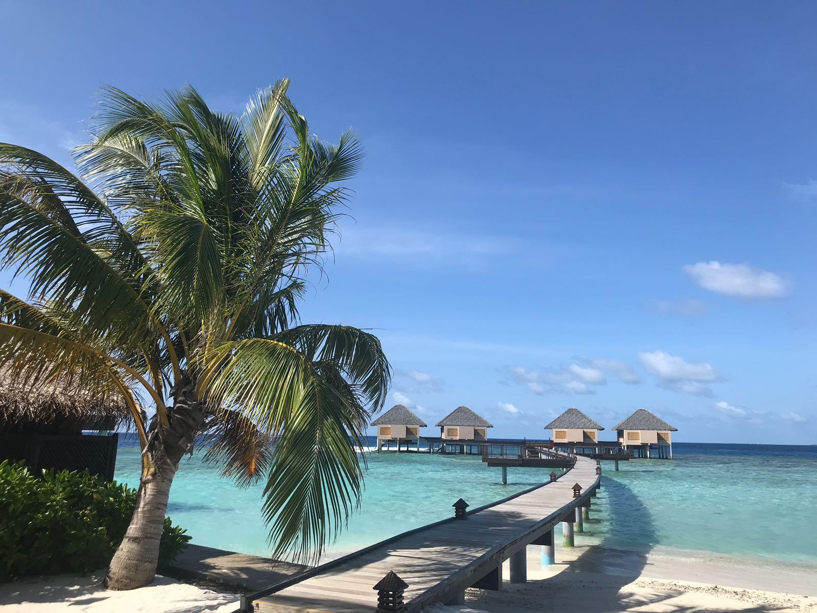 Maldivi & Šri Lanka - Nova Godina 2021.