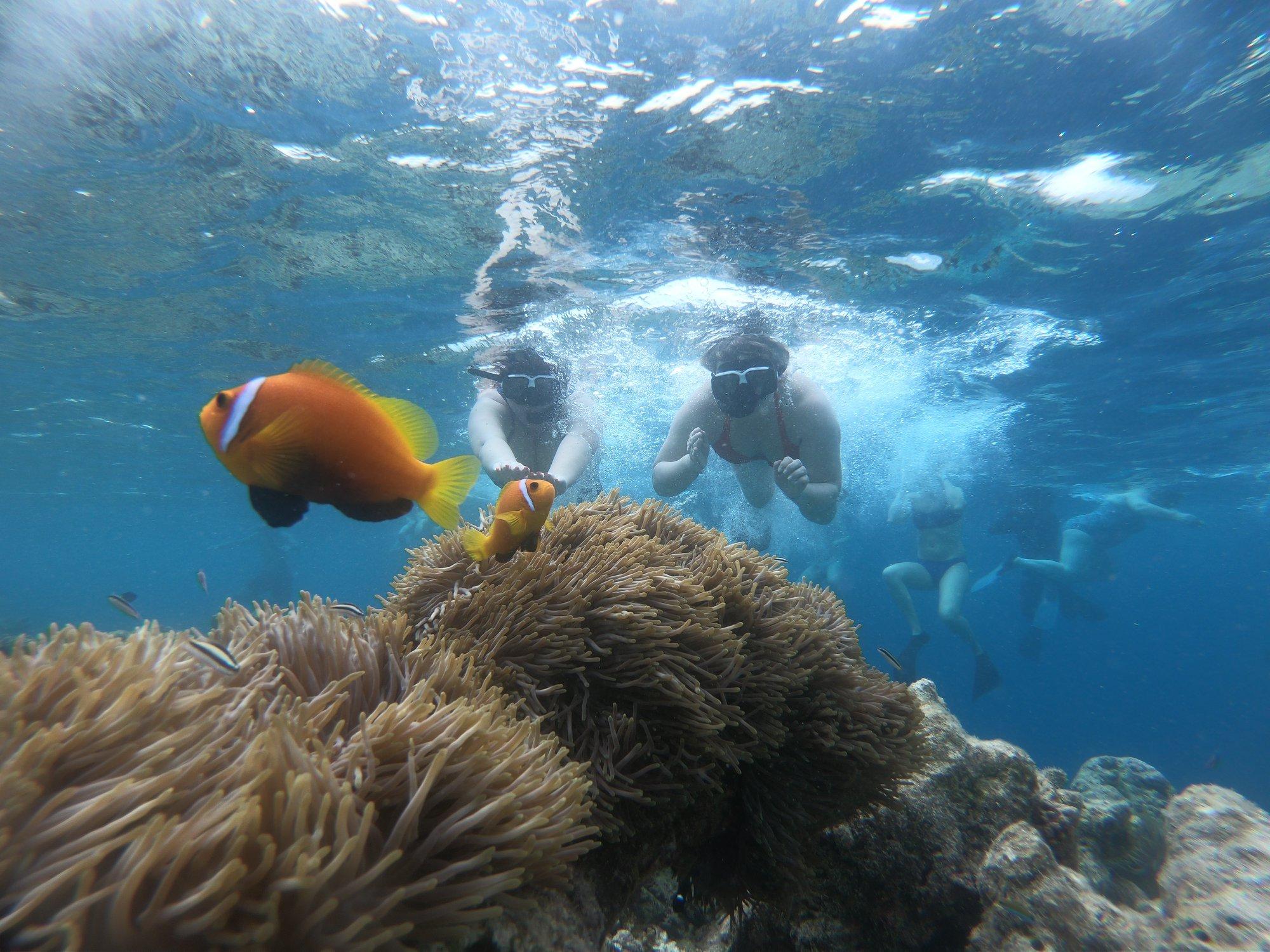 Maldivi - Raj na zemlji